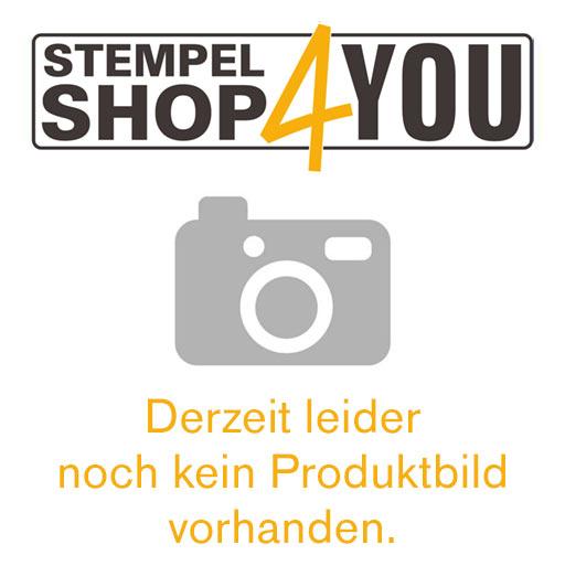 Herrnhuter Stern A1e blau-weiß ca. 13 cm - LED